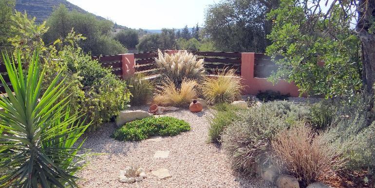 Bungalow-pool-garden