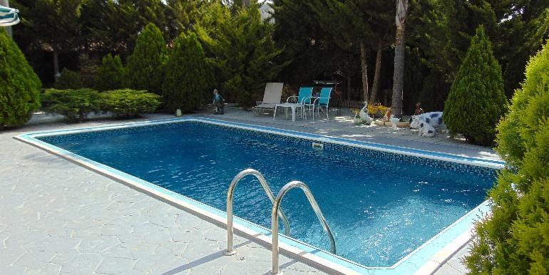 Bungalow-pool2