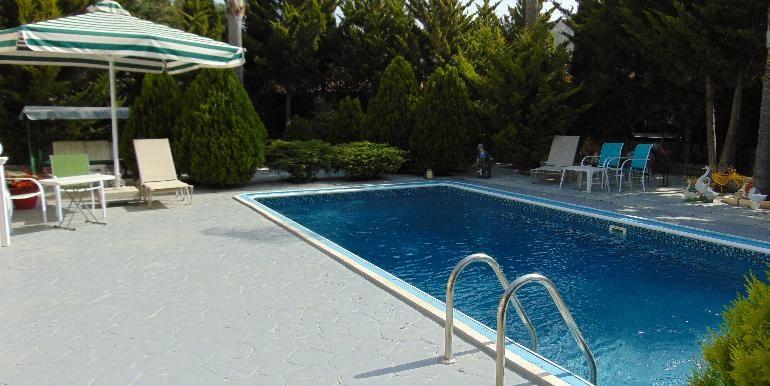 Bungalow-pool3