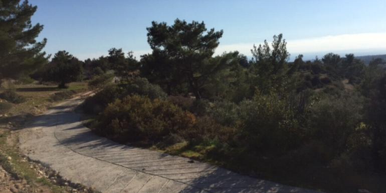 zanaja12-plot