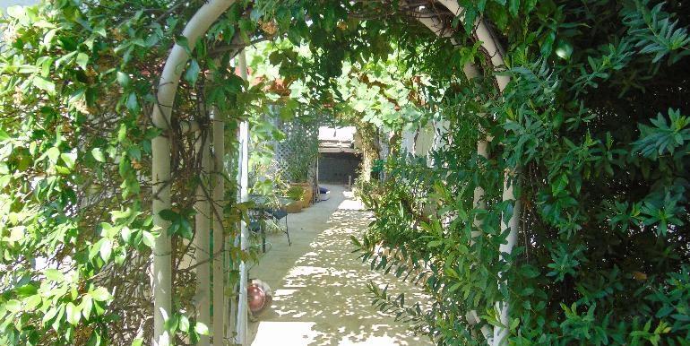 House - rear garden