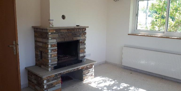 House - Snug fireplace