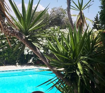 House pool3